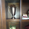 Trophy with pine cones
