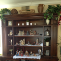 Family Room bookcase
